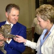 В Ижевском зоопарке появился на свет пятнистый леопард